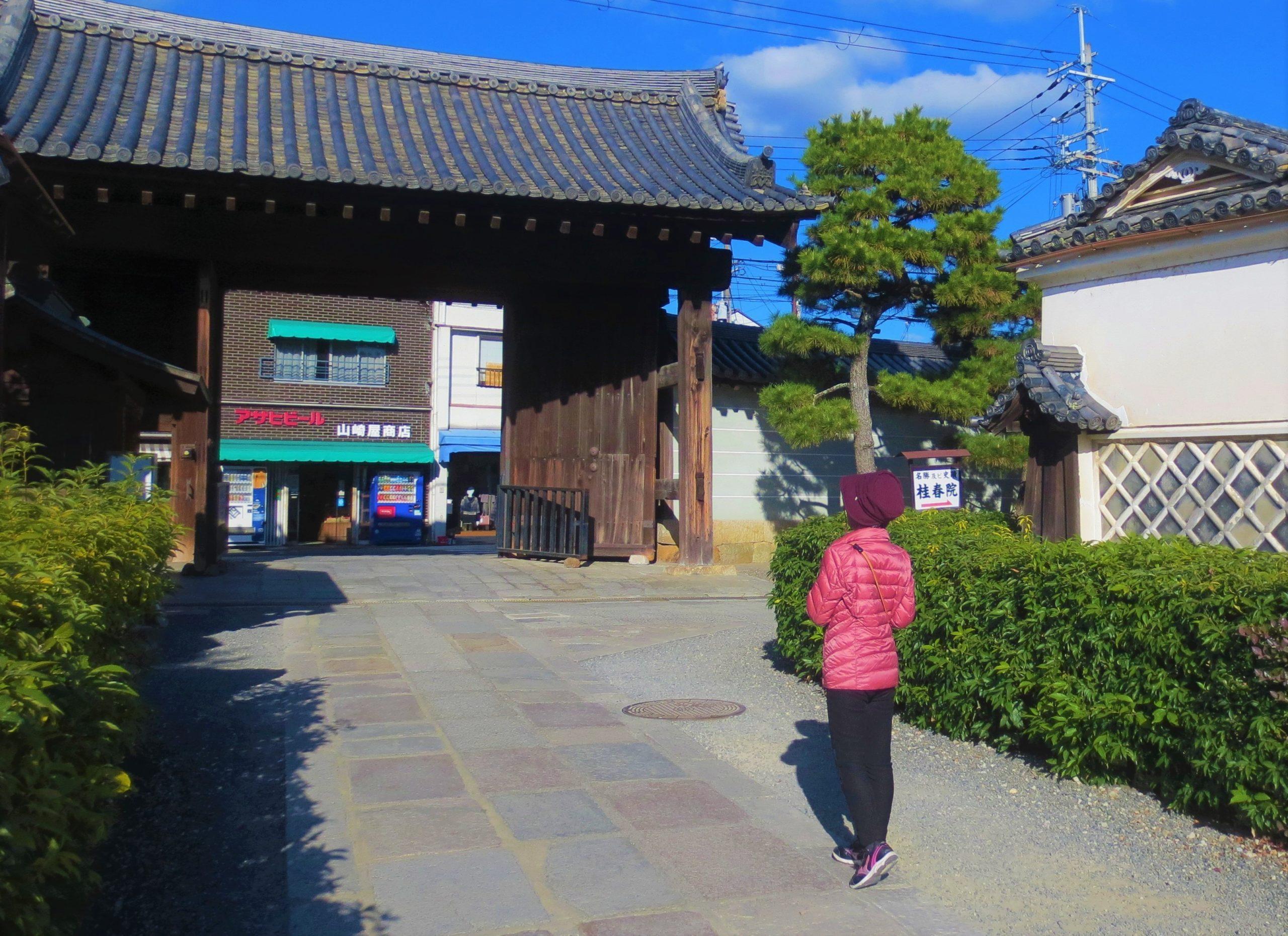 妙心寺の境内を歩く戸倉さん